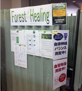 森林1.JPG